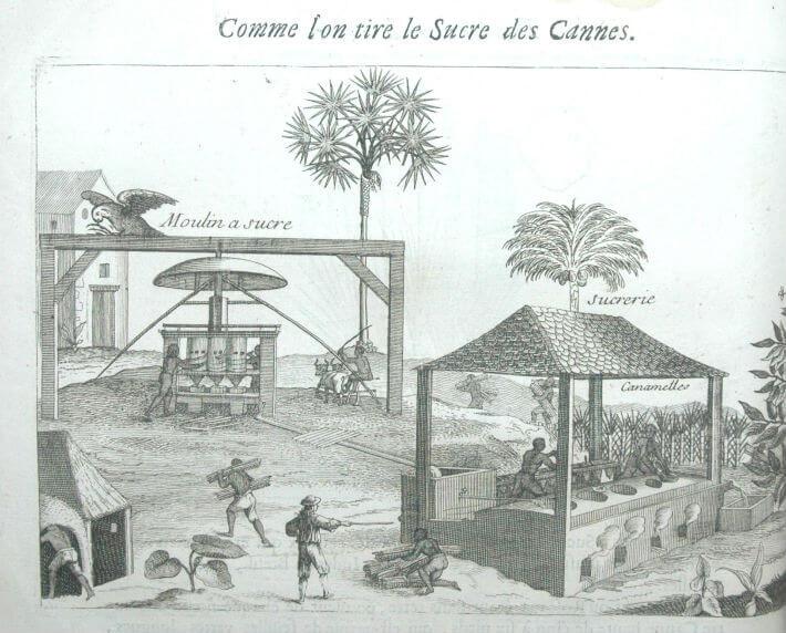 Le travail dans un moulin à sucre aux Antilles