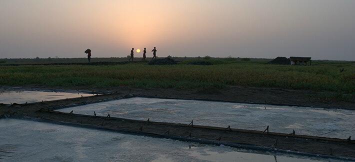 Sel cristallisé sur bâche prêt à être récolté - Plaine de Koba, Guinée - © Pierrot Men - 2017