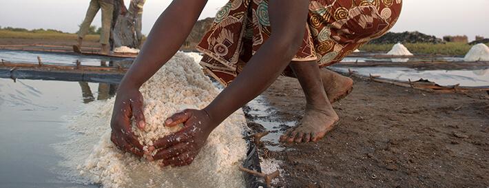 Amassement du sel à la main en bordure du cristallisoir - Plaine de Koba, Guinée - © Pierrot Men - 2017