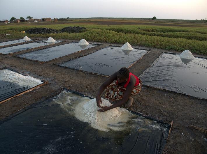 Pré-égouttage  au bord d'un cristallisoir dans le but d'obtenir un sel très clair - Plaine de Koba, Guinée - © Pierrot Men - 2017