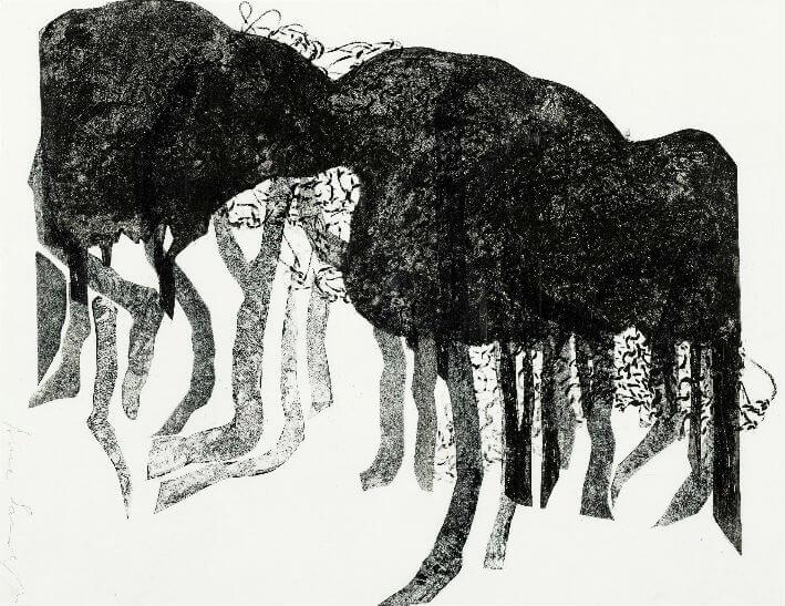 PDM 2012 -  Monstre au petit bois - Anne SARRAZIN