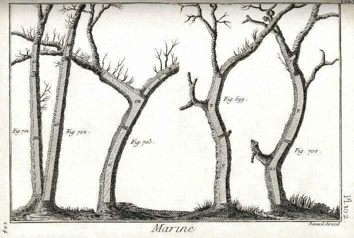 Encyclopédie méthodique marine : planche 102